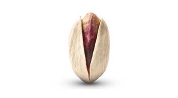 Pistachio-akbari-